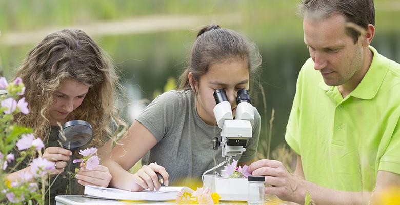 1e476dfb5b O curso é uma oportunidade para profissionais da educação terem contato com  a área de educação ambiental