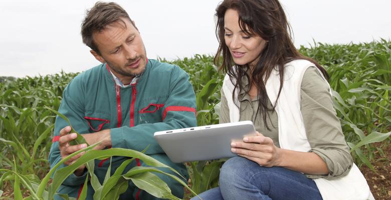78237a638e O curso forma profissionais capacitados para atuar nas cadeias produtivas  agropecuárias e agroindustriais. O técnico em Agronegócio é o responsável  por ...